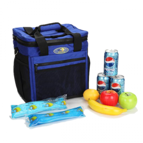 Top Quality OEM Printed Beverage Cooler vaccine Cooling Bag